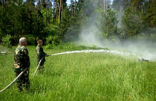Миргородські лісівники не беруть приклад з російських