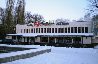 «Виллой Крокодила» стало здание возле фонтана в парке «Победа»