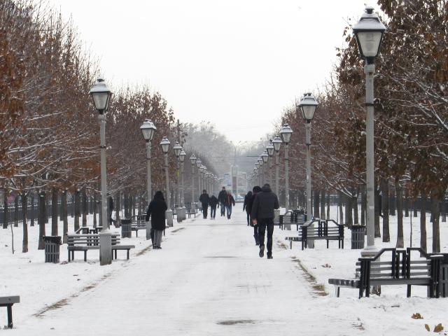 Сніжні вулиці Полтави сповнені радості і дитячого сміху