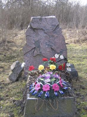 Могила Василя Чучупака на цвинтарі у Мельниках