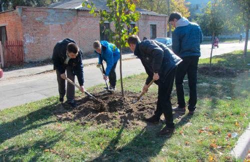 Журналісти саджають дерева