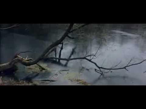 """Отрывок из фильма """"Солярис"""""""