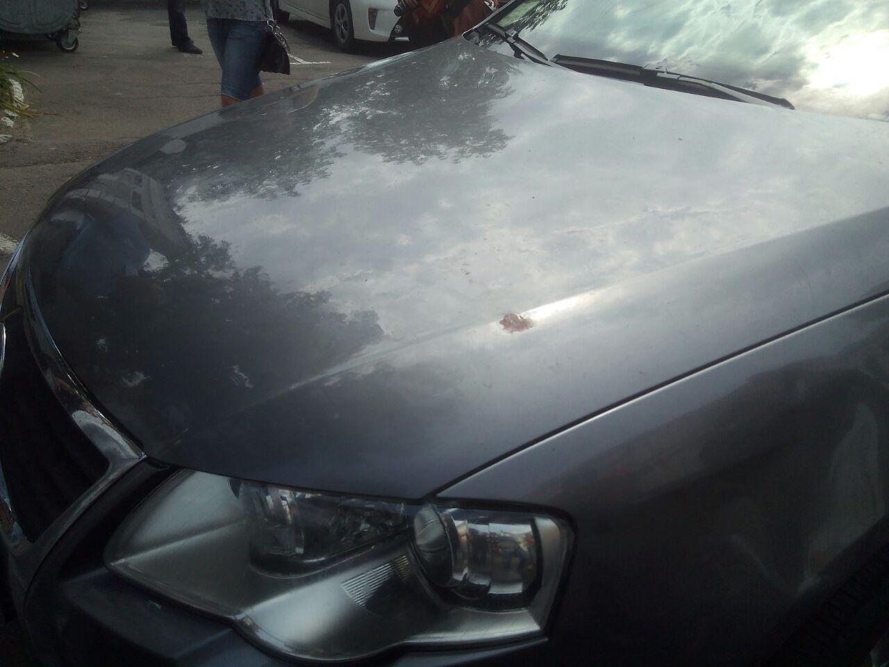 Капот автомобиля Мамая с кровью депутата Шамоты
