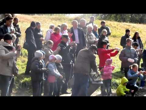 У Полтавскому дендропарку з'явилася  пара чорних лебедів