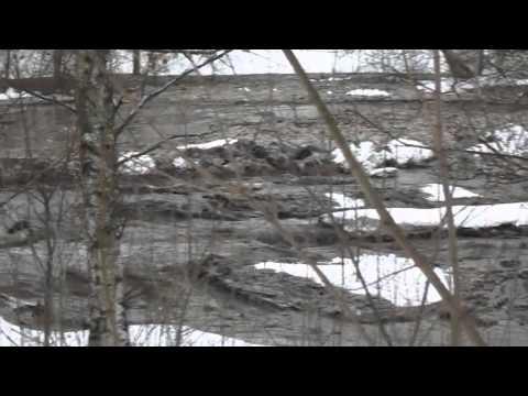 Прорыв дамбы в Полтавском дендропарке (2016.01.19)