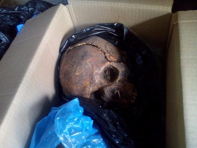 Знахідки археологів