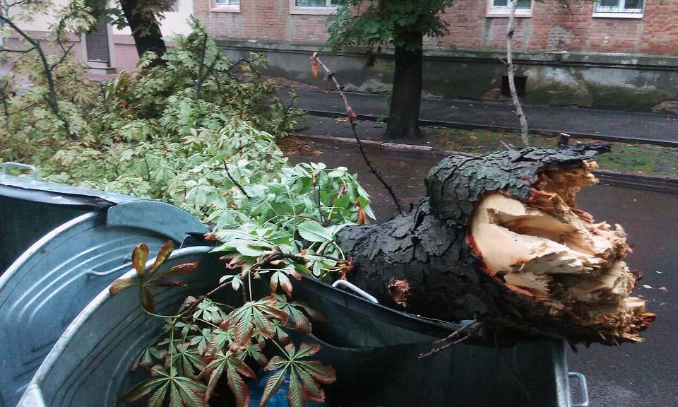 Около 18:30 по улице Стретенской (Комсомольськой) крупная ветка упала на дорогу и повредила мусорные баки, стоящие на обочине.