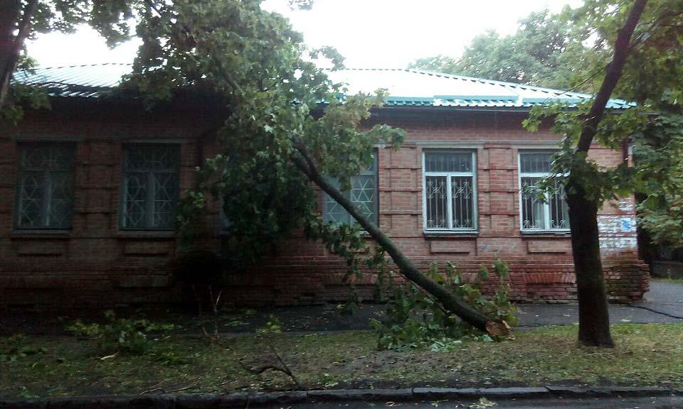 Большая ветка упала на крышу дома по улице Пушкина, 19а.