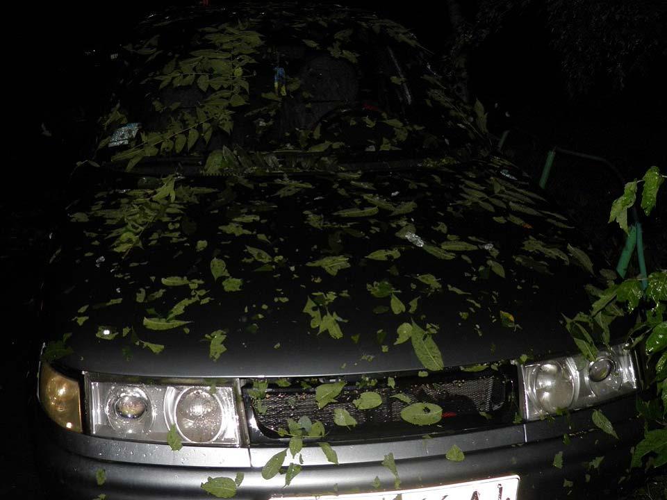 Фото последождевой маскировки машины отАлександра Дегтярука