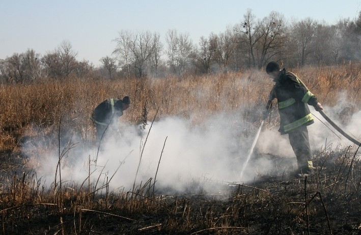 НаПолтавщині натериторії 20 гектарів горять поклади торфу