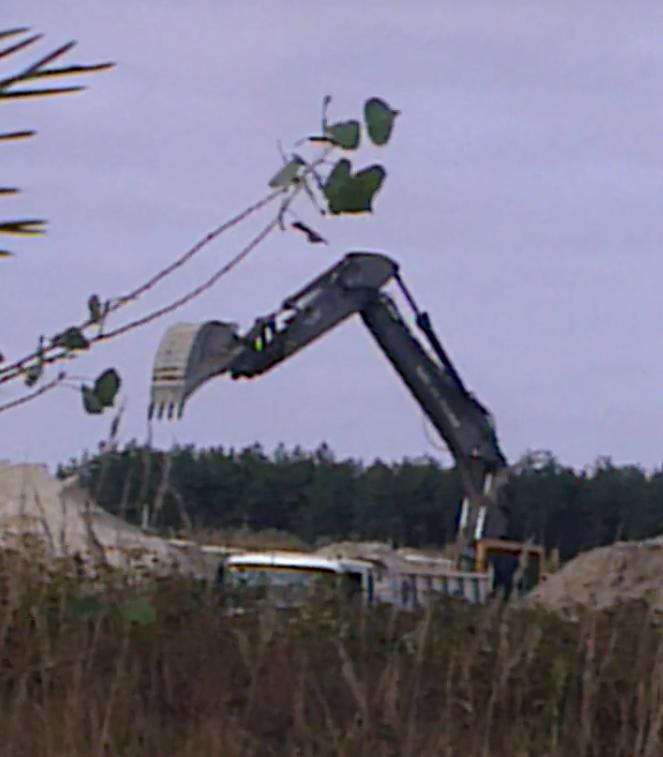 Процес незаконного видобування піску у цьому кар'єрі