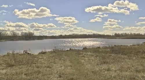 Саджанці висадили на березі річки Коломак