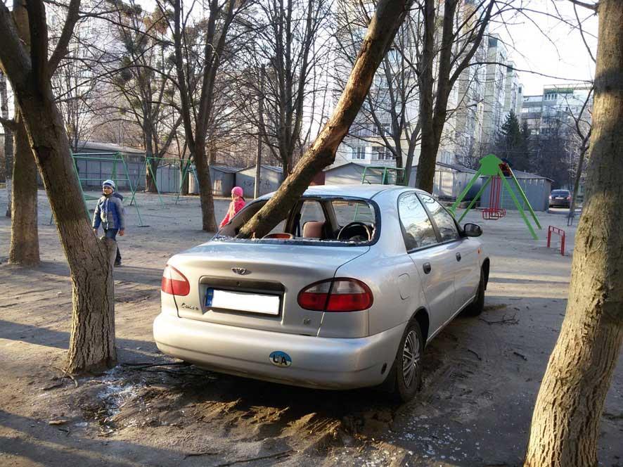 Падіння гілки дерева на автомобіль на вул. Великотирнівській