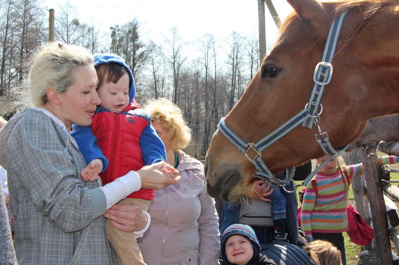 Годування коней