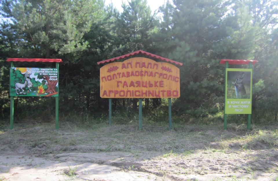 Чиновниця Держекоінспекції проводила позапланову перевірку Гадяцького агролісництва