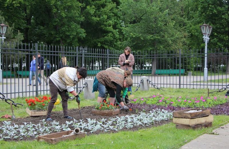 Під час висадки квітів в Корпусному парку