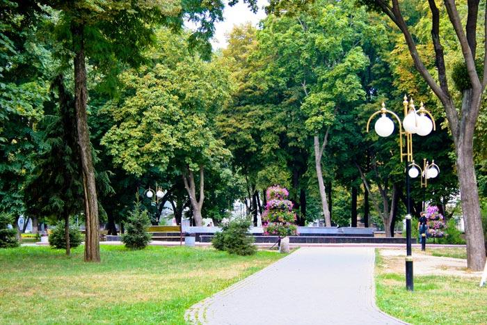 Сонячний парк. Вертикальне озеленення (фото з архіву)