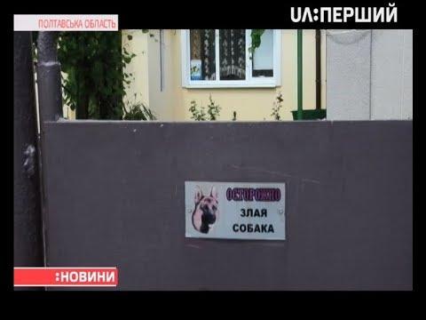 Шість годин тривала операція для хлопчика з Полтавщини, якого покусав собака