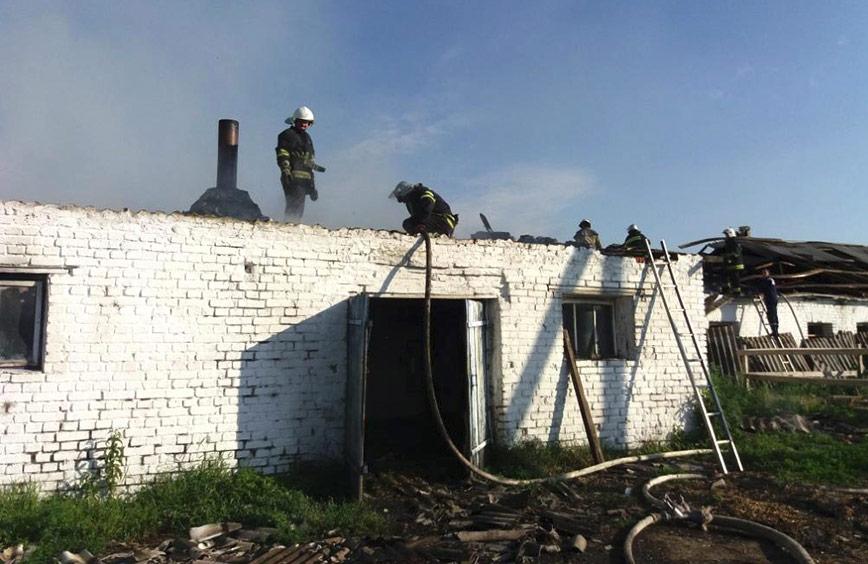 Пожежа на фермі у Лохвиці