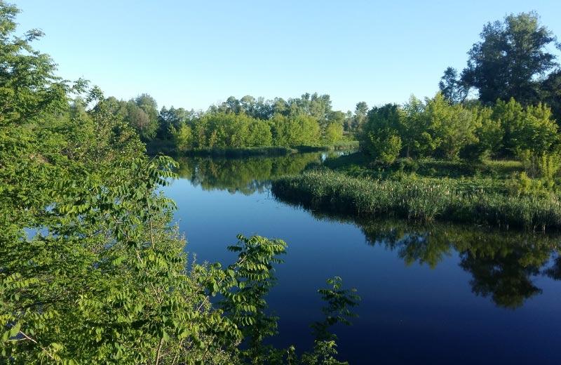 Річка Псел