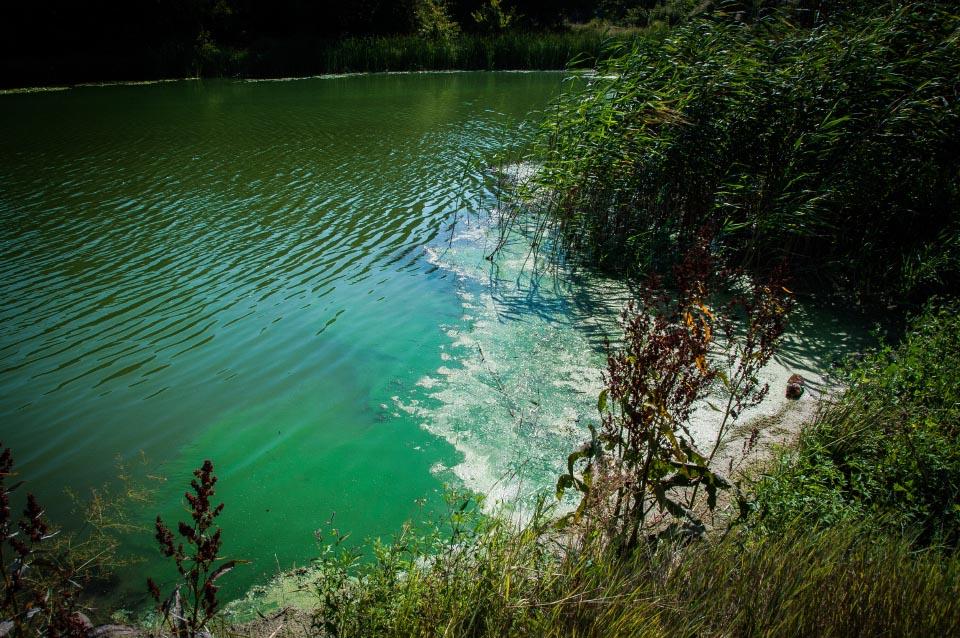 Вода біля Ліска