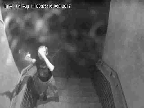 У Полтаві невідомий вже втретє розстрілює з пістолета зовнішні плафони 4-ї міськлікарні