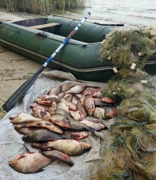 Вилучений човен, сіткове знаряддя та риба