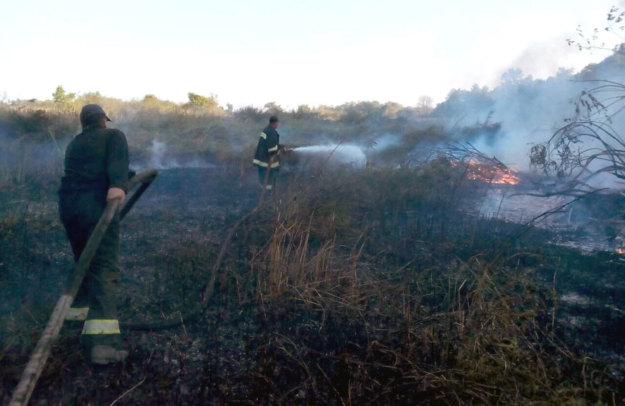 Масштабне лихо наПолтавщині - палає 70 гаторфовищ