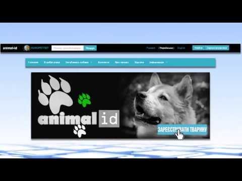 ANIMAL-ID.INFO - коротко про міжнародну базу даних тварин