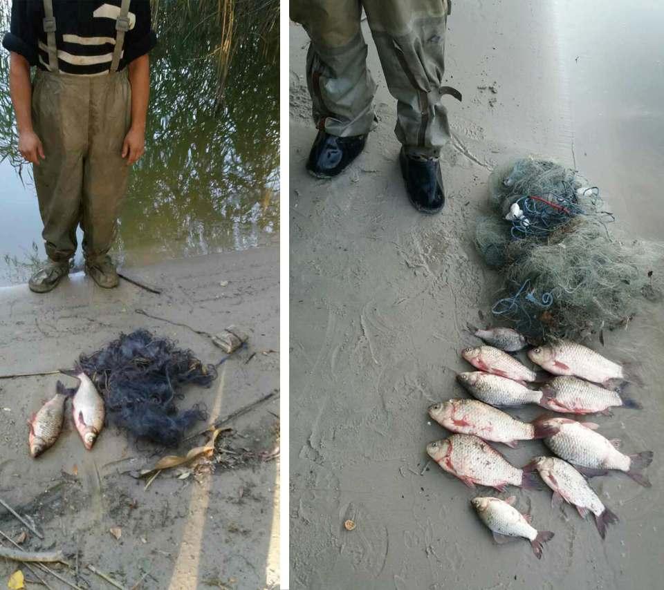 Конфіскована риба і знаряддя лову