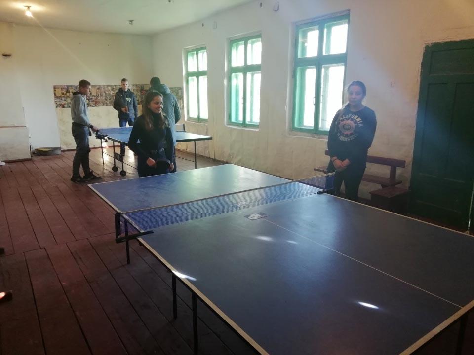 Настільний теніс у Коломацькій школі