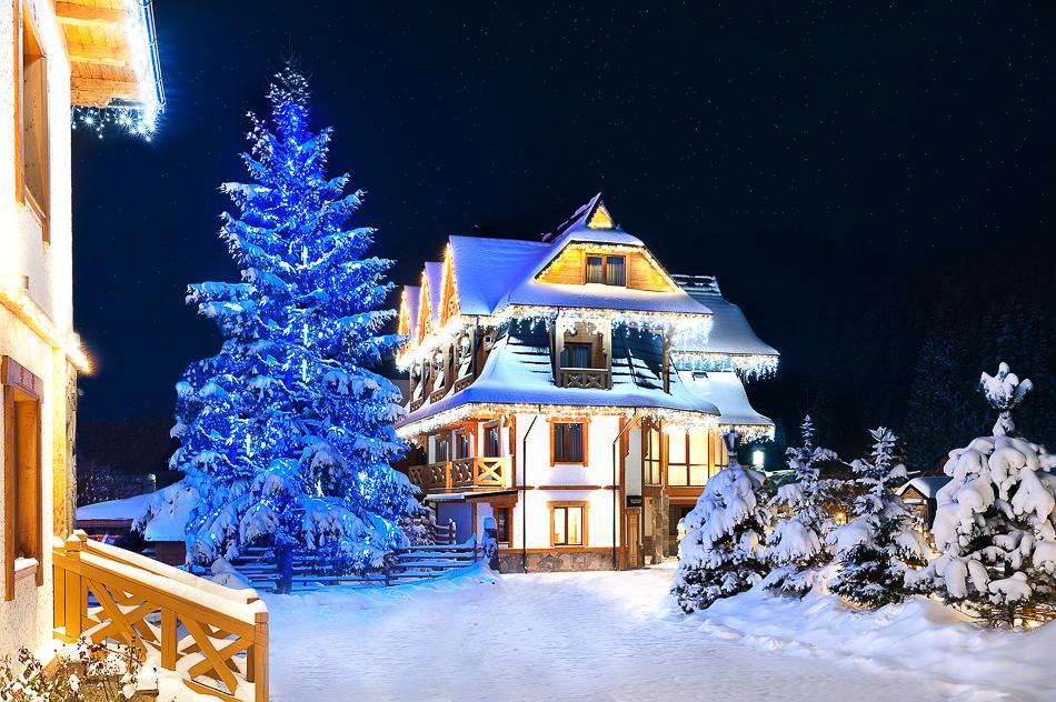 Шале на новый год в горах апартаменты тенерифе цены