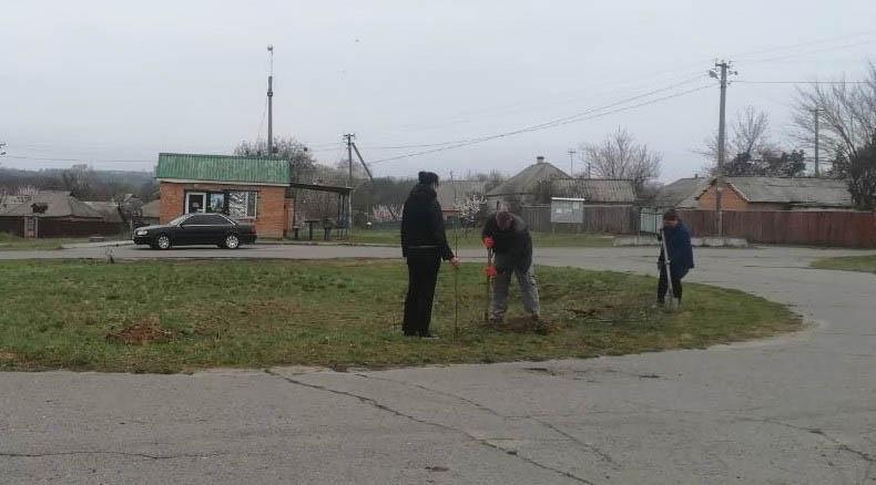 Активісти висадили більше 30 дерев