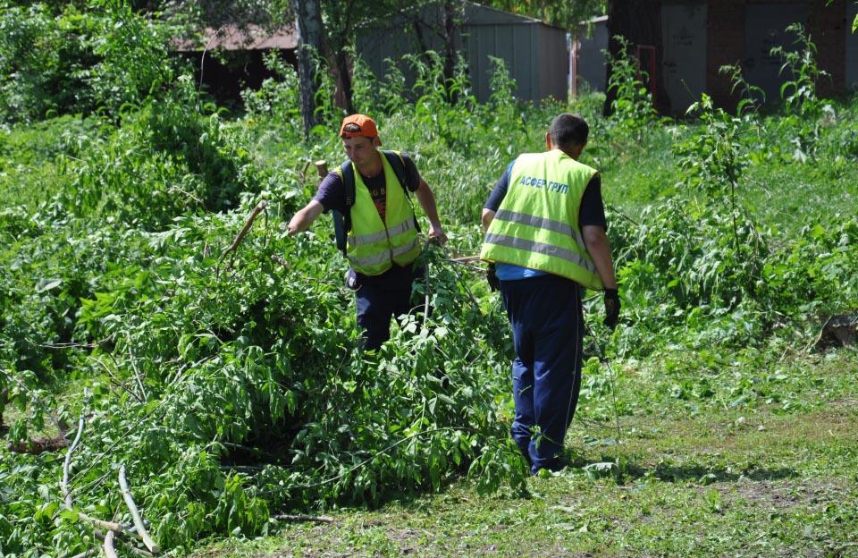 Працівники ТОВ «Асфер Груп» розчищають хащі