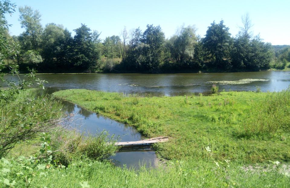 Річка Псел поблизу села Остап'є