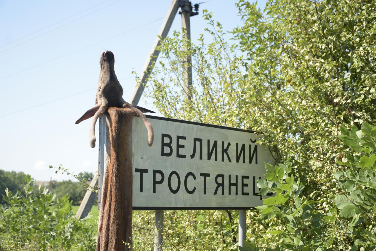 В середу вранці на в'їзді в село Щербанівської ОТГ місцеві жителі на вказівному знаку знайшли свіжу оленячу шкуру з головою