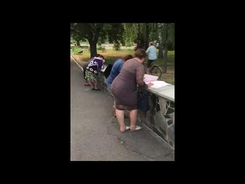 Фальсифікація протколів в окрузі №148 у парку