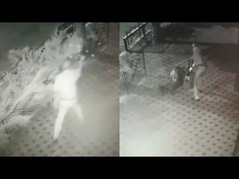 Напад на охоронця кафе «Ботанік» у Полтаві (2019.08.06)