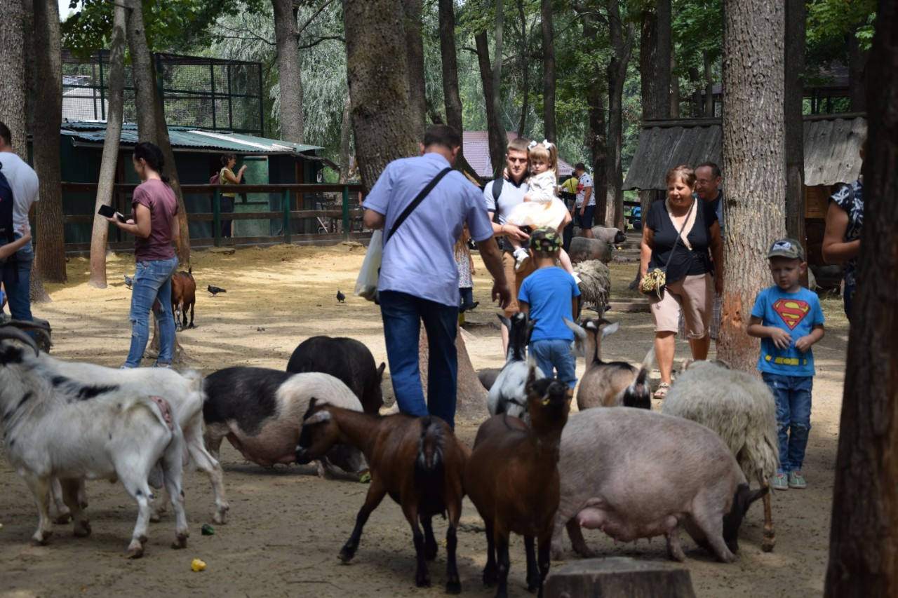 Діти та дорослі відвідали і контактний зоопарк на території екопарку