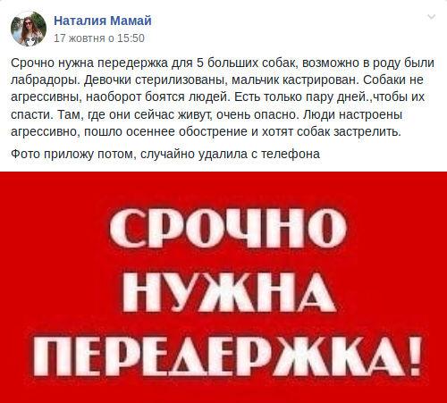 Публікація працівниці КАТП-1628 у Фейсбуці