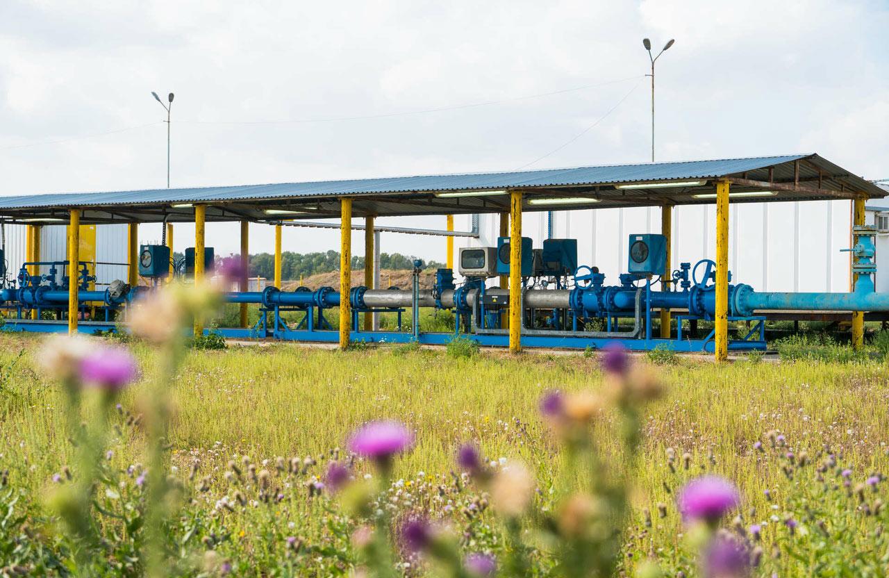 Сайт полтавской газонефтяной компании интернет рекламные агентства создание сайта