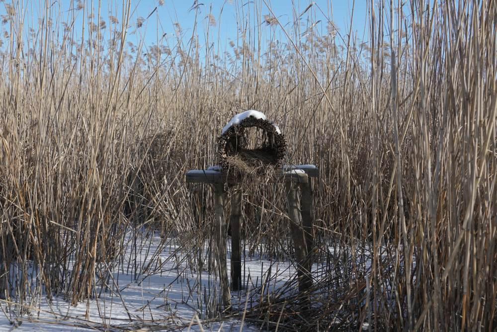 Штучні гнізда для качок
