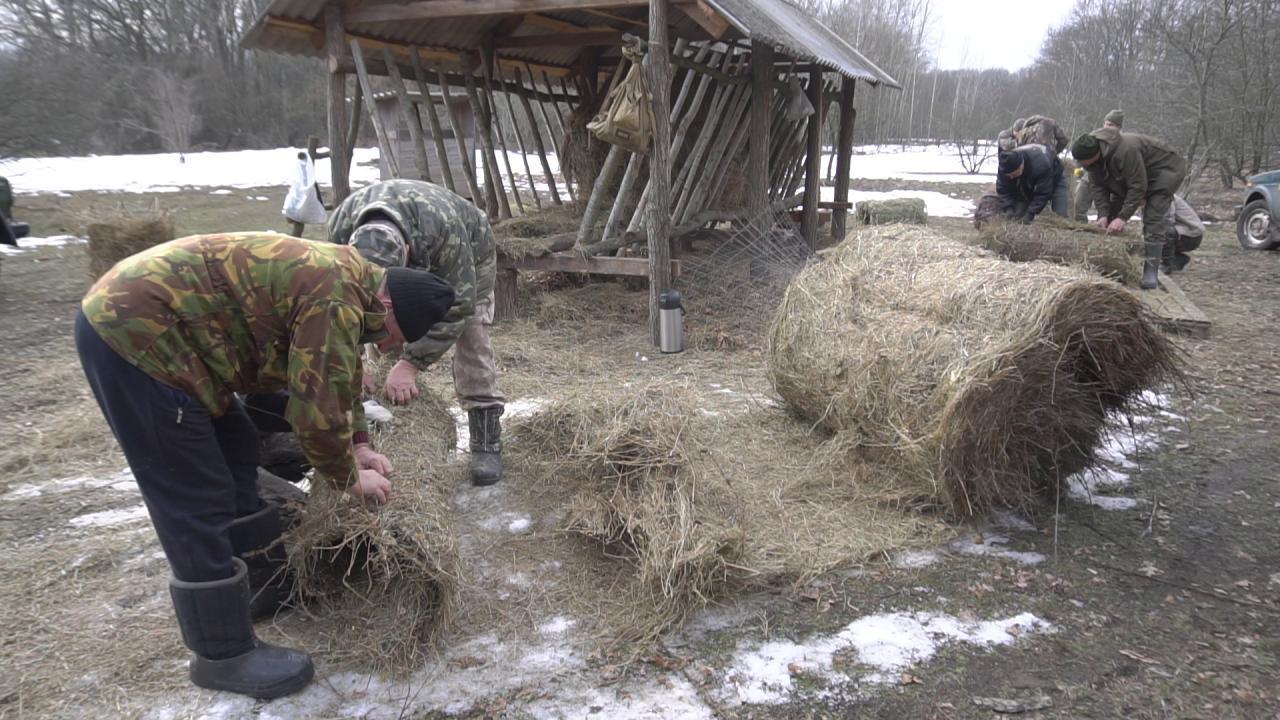 Гнізда виготовляють за канадською технологією