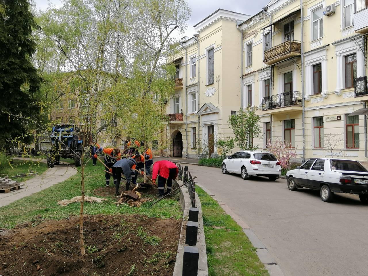 Також посадили нові дерева.