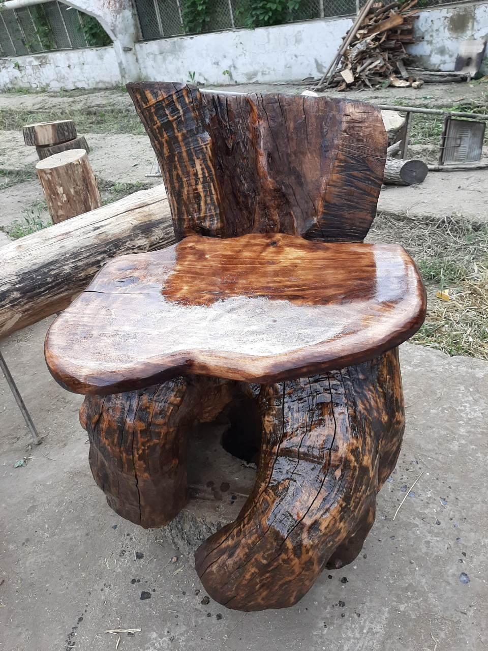 Крісло зі старого дупла