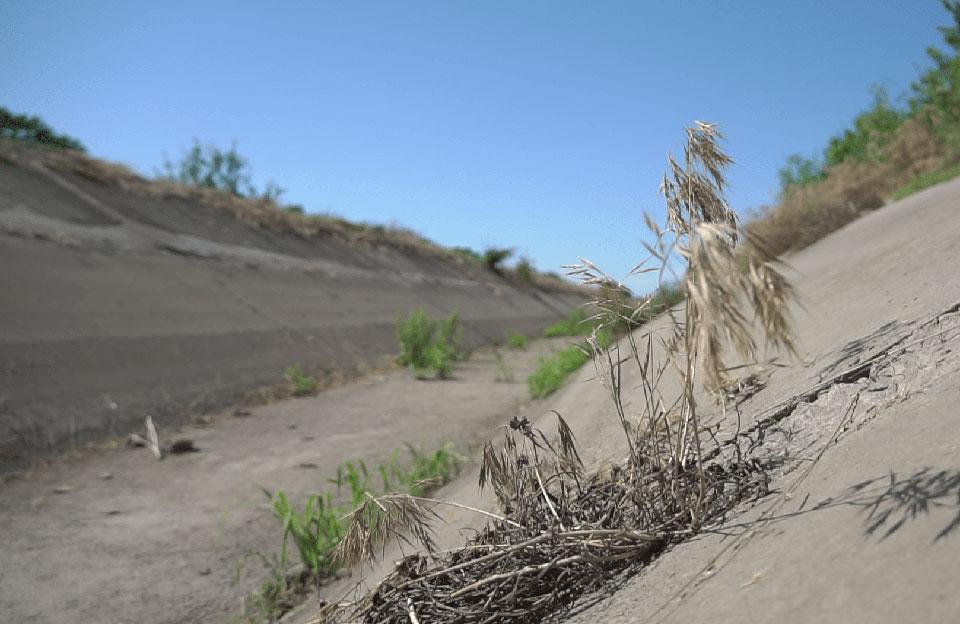 Канал не очищують від трави та сміття