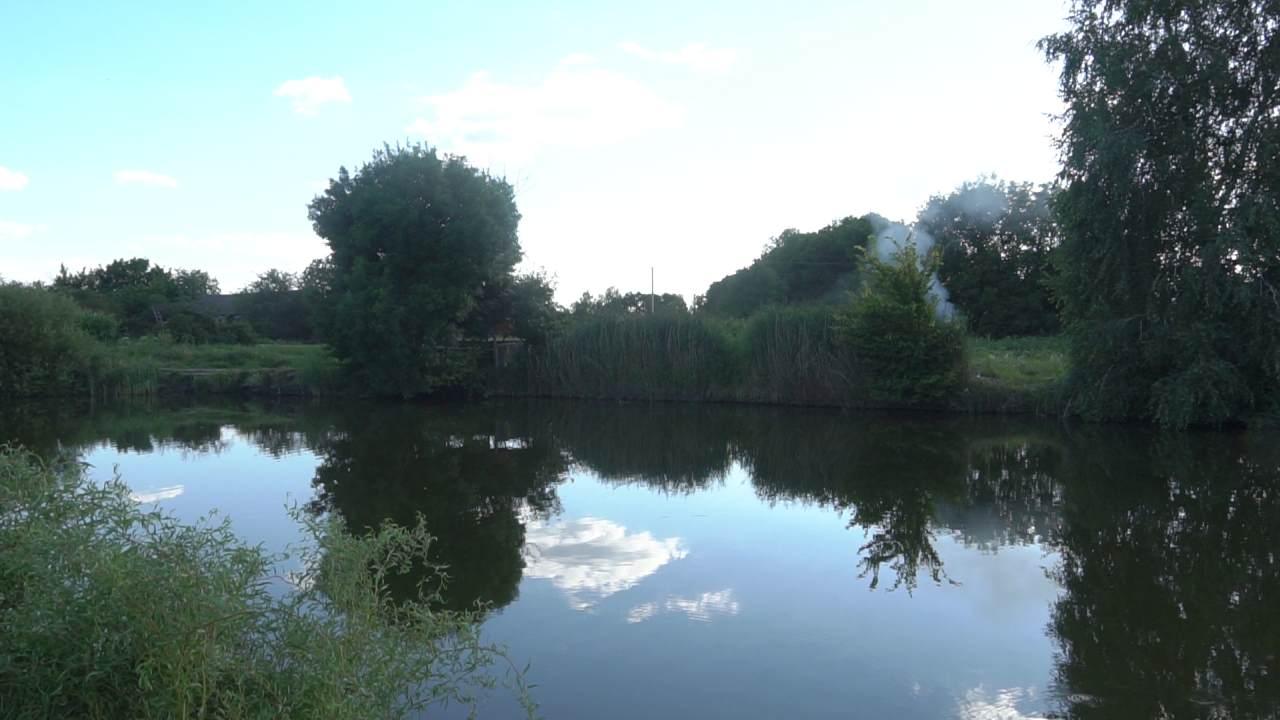 Ставки у селі Надержинщина стали улюбленим місцем відпочивальників і рибаків