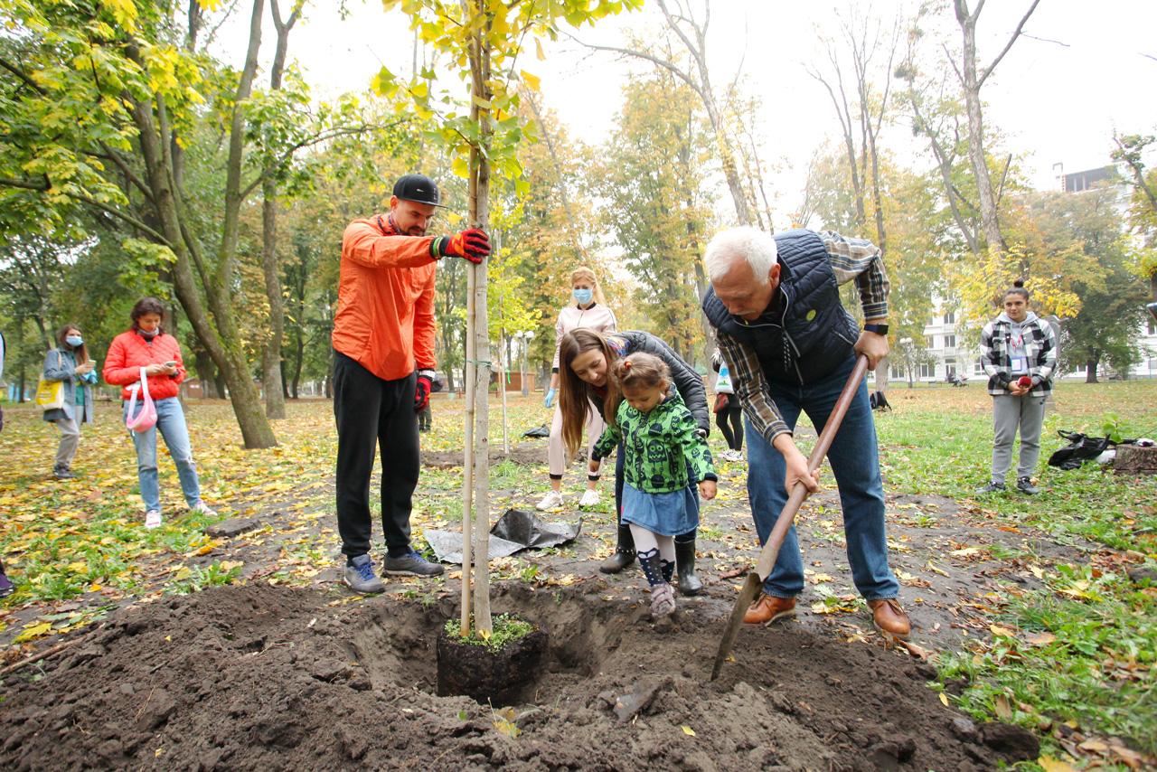 Сергій Іващенко, кандидат на посаду міського голови Полтави, саджає дерево гінкго