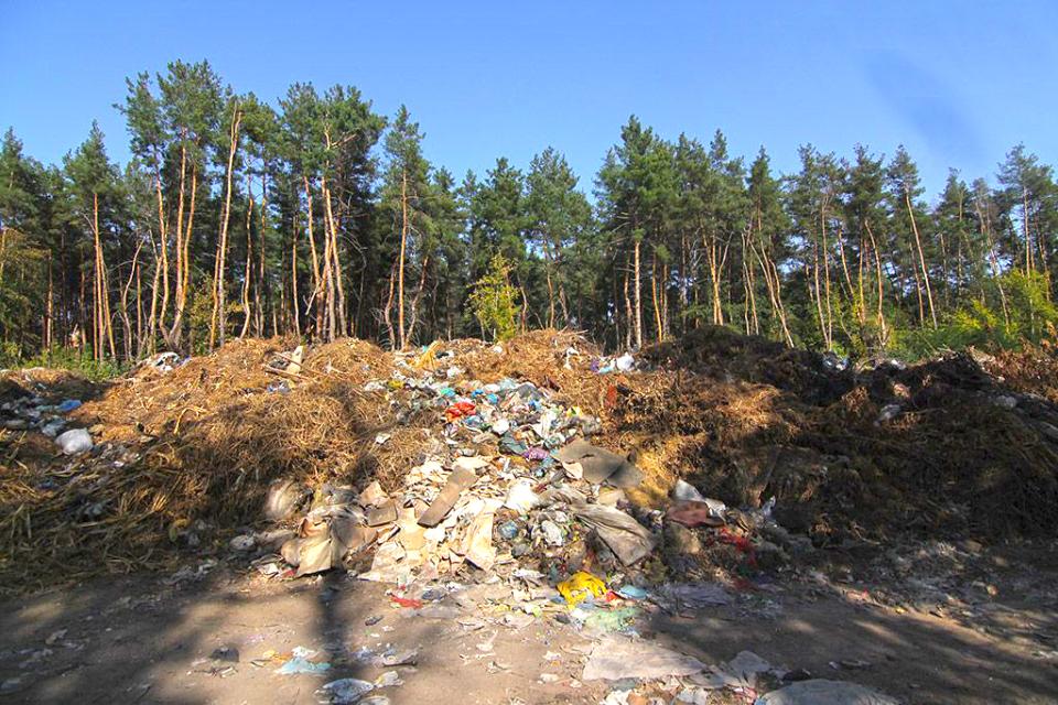Несанкціонаване сміттєзвалище у хвойному лісі під Кобеляками потрібно ліквідувати