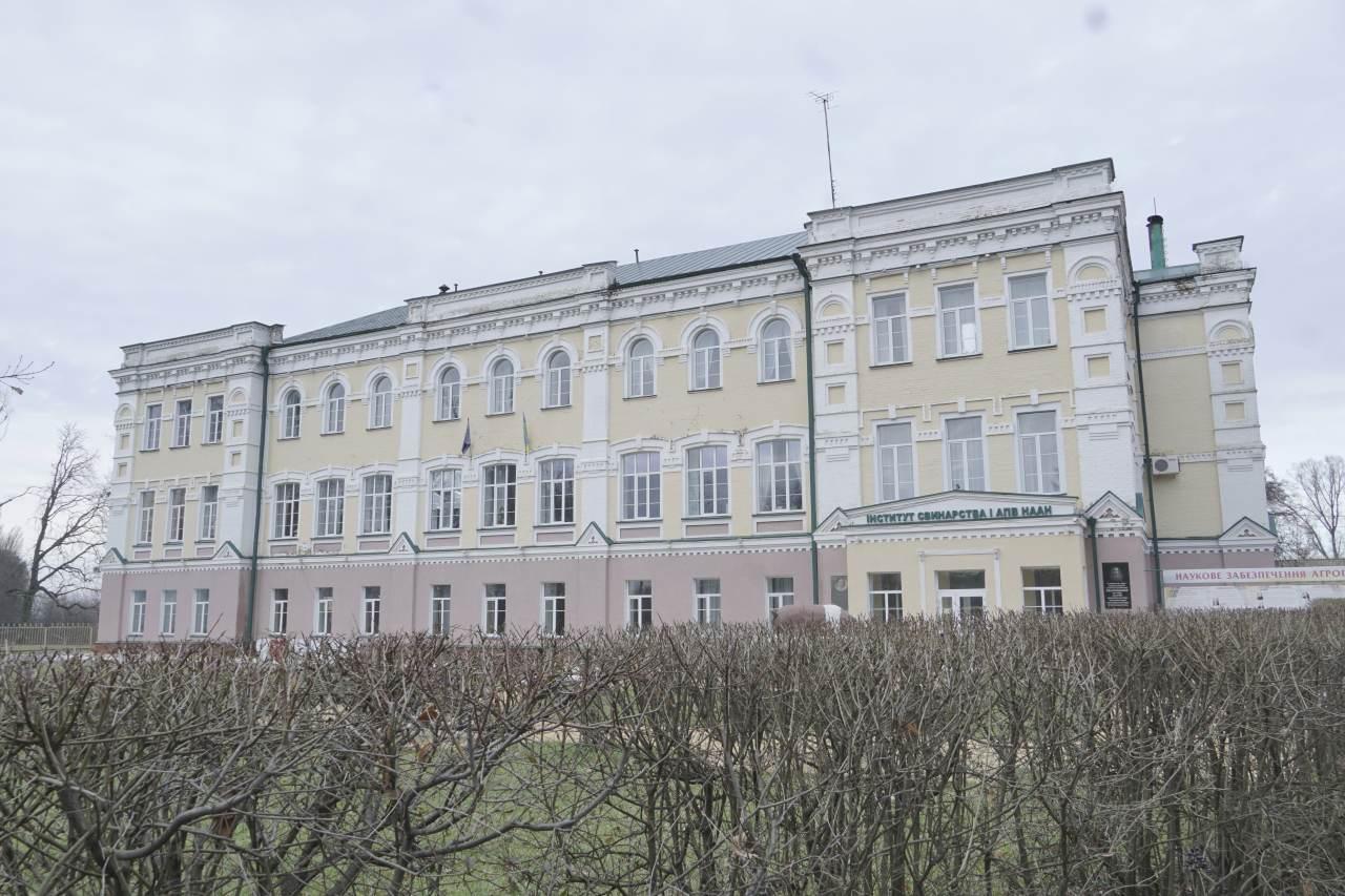 Дослідні підприємства Полтавщини заявляють про тиск з боку Інституту свинарства та АПВ НААН